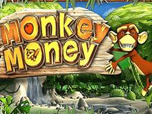 Деньги Обезьянки в онлайн-казино